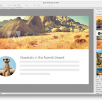 Adobe Stock Tips: How to Change your Background Photo using Adobe App
